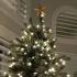 Christmas Tree Star Topper image