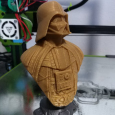 Picture of print of Darth Vader bust 这个打印已上传 Manuel Jesús