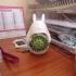 Totoro planter - Small Totoro vase image