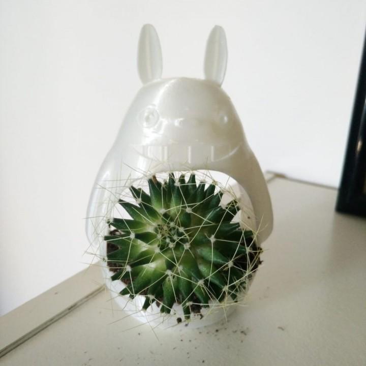 Totoro planter - Small Totoro vase