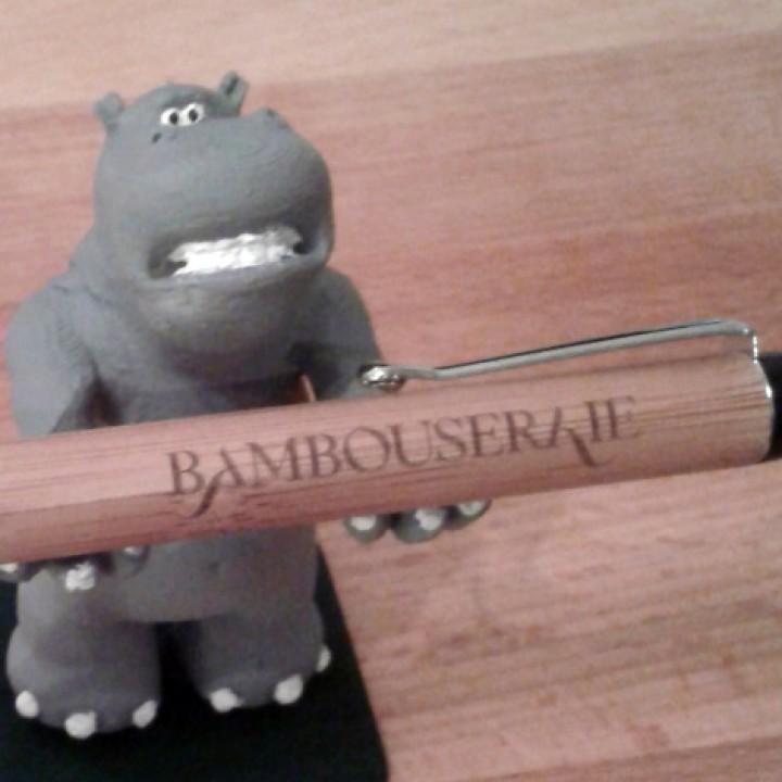 Hippopotamus_pen_carrier