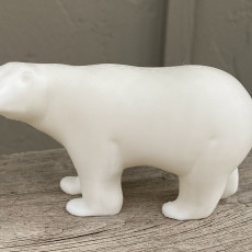 Picture of print of Polar Bear