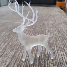 Picture of print of Christmas Deer