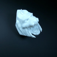 Picture of print of Battlecat HEAD