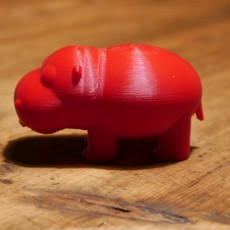 N-Hippo without the N