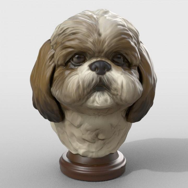 3D Printable Shih Tzu Statue By Kam Yu