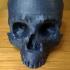 MEMENTO Skull chest image