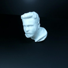 Picture of print of Untitled 3D Scan 2019-01-18