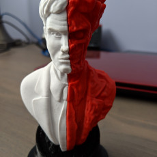Picture of print of Two-Face bust