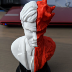 Picture of print of Two-Face bust 这个打印已上传 franek