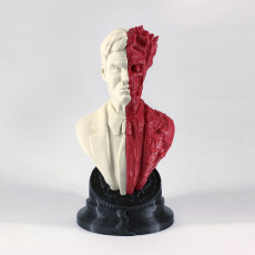 Picture of print of Two-Face bust 这个打印已上传 Kaspars Butlers