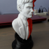 Two-Face bust print image