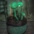 Glowing Mushrooms print image
