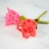 Cutout Heart Rose image