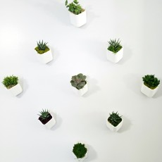 230x230 wall planter