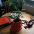 Dalek Plant Pot All in One (Plate, hole and channeling) image