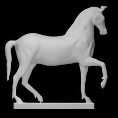 The Mazzocchi Horse