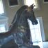 The Mazzocchi Horse image