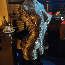 Picture of print of Woman body optimised for vase mode