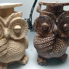 An Owl