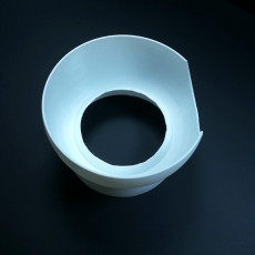 Picture of print of Google Mini Bowl