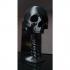 Skullcup image