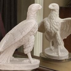 Picture of print of Striding Eagle