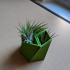 Tessellating succulent planter image