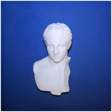Picture of print of Roman youth head Met Museum NYC