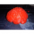 A Brain *REAL* image