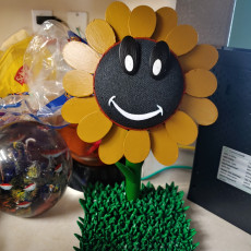 Picture of print of Google Home Sunflower