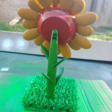 Picture of print of Google Home Sunflower This print has been uploaded by Benjamin A Dominguez