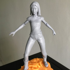 Picture of print of Alita project