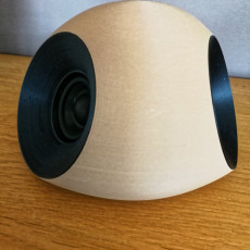 Picture of print of Bluetooth Speaker