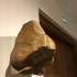 Fragment of a royal nose image