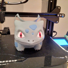 Picture of print of Google home Bulbasaur