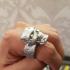 Terminator Ring image