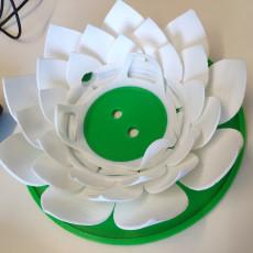 Google Home Mini Lotus
