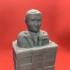 Trump Chess image