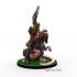Goblin Hero Captain miniature image