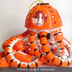 Jell-E Medusa: The Scout