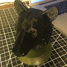 Picture of print of Black Bear Bust