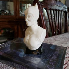 Picture of print of Catwoman bust 这个打印已上传 Ashe Junius