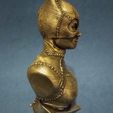 Picture of print of Catwoman bust 这个打印已上传 Jeremy Harpold