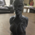 Catwoman bust print image