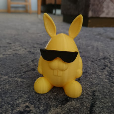Picture of print of Mr Cool  Bunny Remix