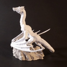 Dragon Posed on Mountaintop