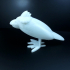 Birdi Tinker Cad print image