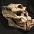 Troll Skull image