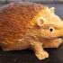Igel Hedgehog Scann image